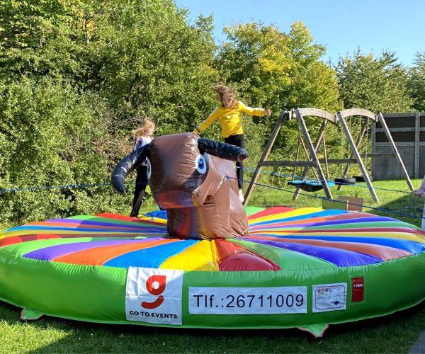 Udlejning af oppustelig rodeotyr for børn i alderen 2-12 år